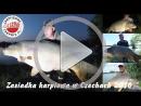 Zasiadka karpiowa Czechy 2016