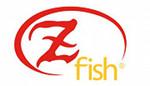 Z-Fish Method Feeder Mould w sklepie wędkarskim Carpmix